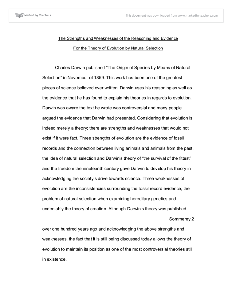 Joey Harrington Essay