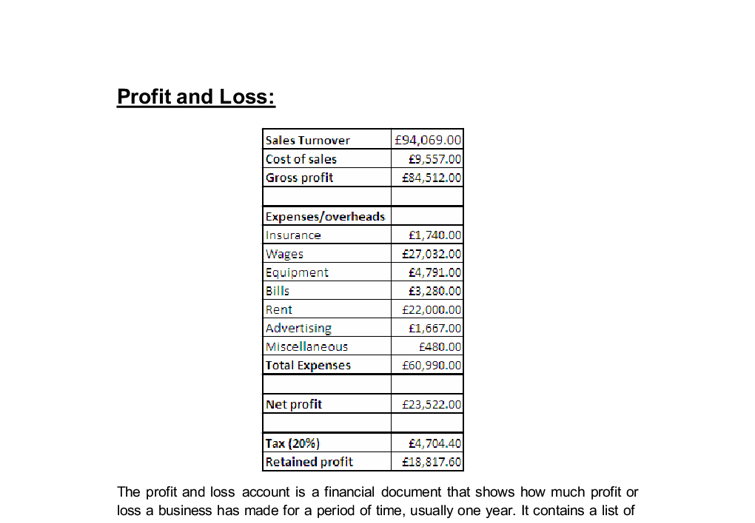 Document Image Preview  Business Profit And Loss