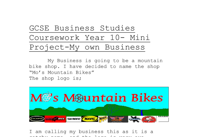 Business Studies Coursework – start up video rental and buy shop Essay