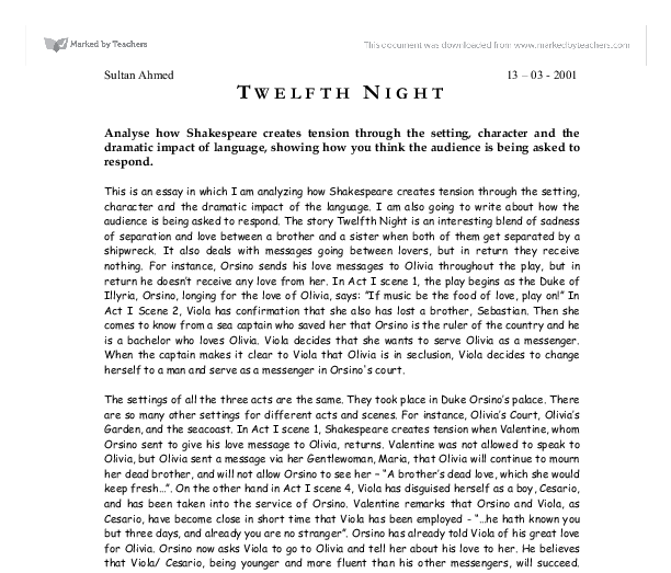 love essays twelfth night