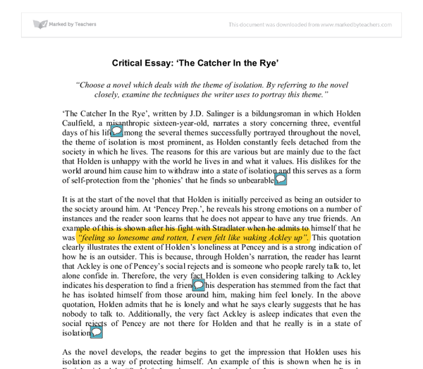 critical essay the catcher in the rye choose a novel which  document image preview