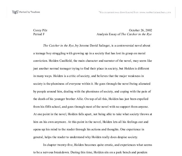 catcher in the rye literature essay Essays and criticism on j d salinger's the catcher in the rye - critical essays   c morality play (allegory) as a literary genre iii everyman a summary of.