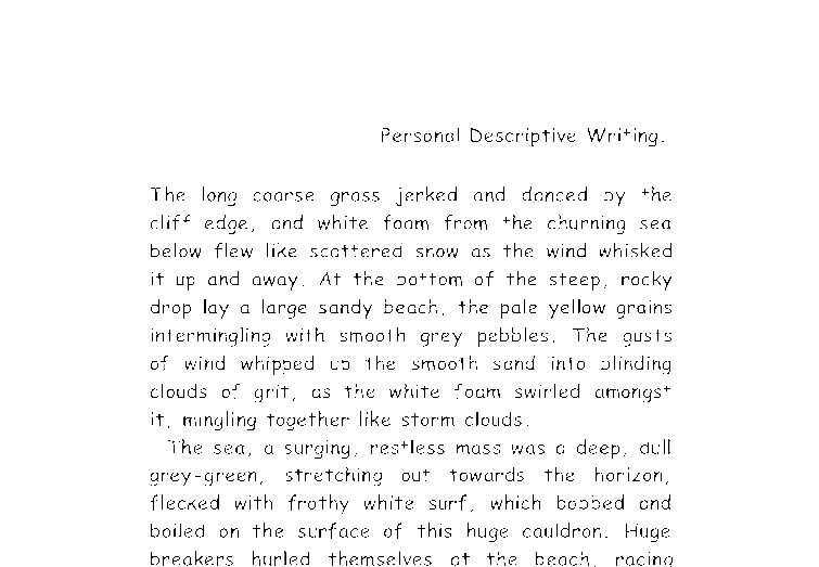 essay describing the beach