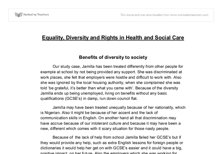 essays on equality and diversity