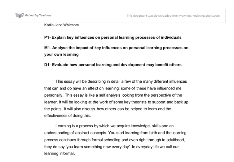 The Key Influences on the Personal Learning Processes of Individuals Essay Sample
