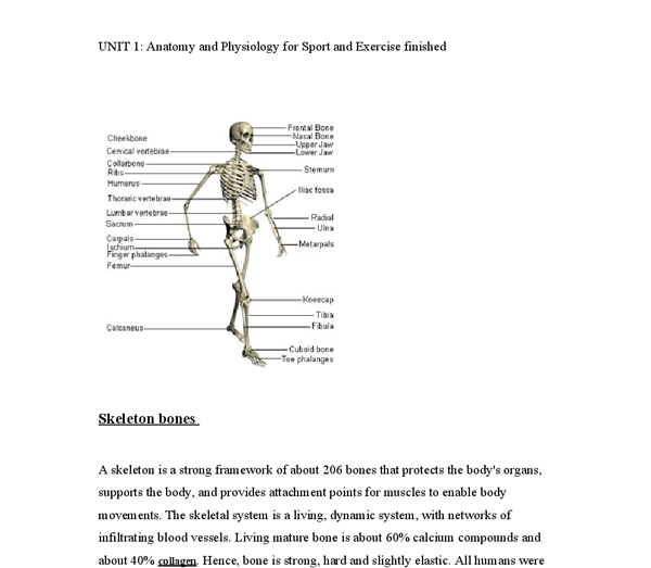 anatomy and physiology of sport Level: undergraduate first year level credit points: 3 hecs bands: 3 faculty:  faculty of health discipline: discipline of sport and exercise science.