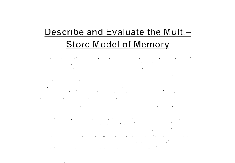 the structure of memory essay
