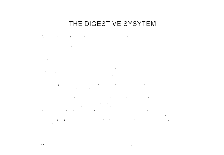 essays on the digestive system Read this full essay on the digestive system human digestive systemsingle- celled organisms can directly take in nutrients from their outside environment mu.