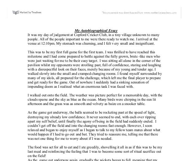 Example of a biographical essay