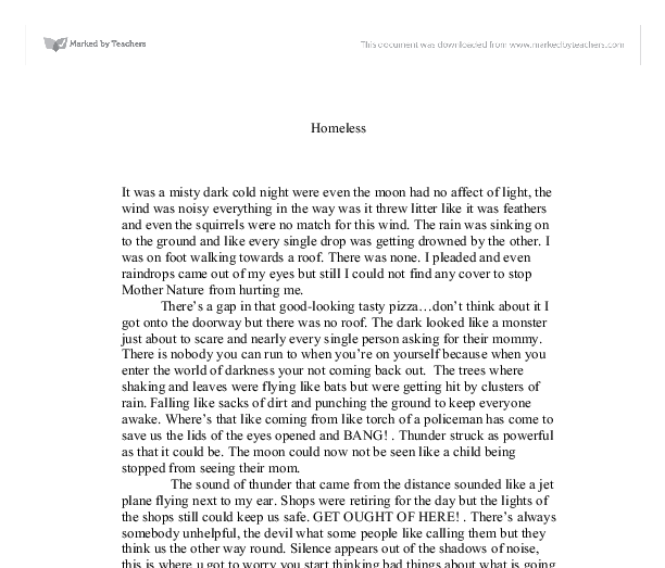 Homeless essays