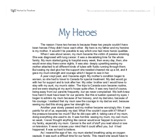 My Mom Is My Hero essay : the analysis of the example