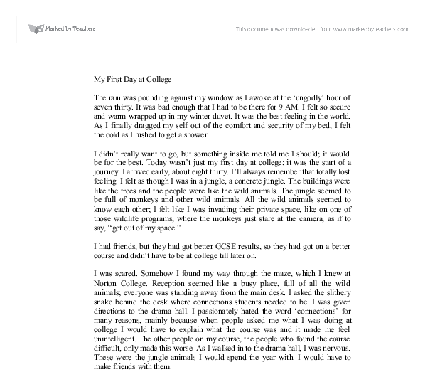 day at school essay a day at school essay