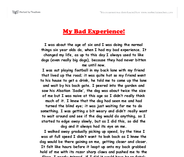 an incident that changed my life essay