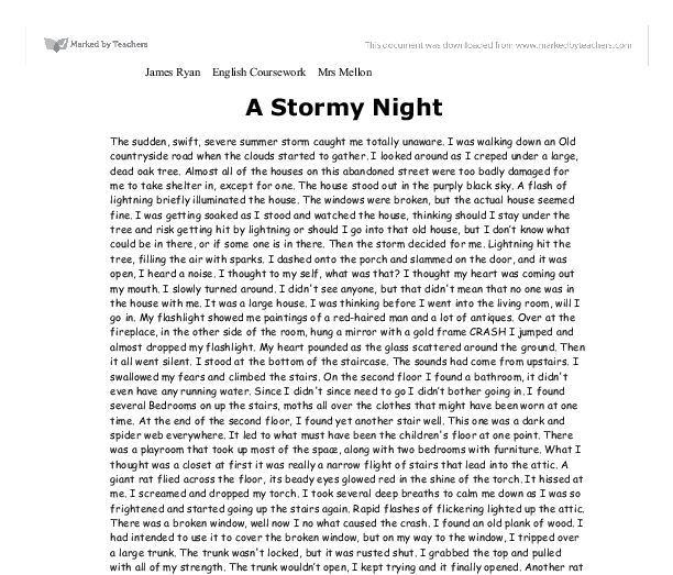 Descriptive essay example short