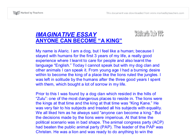 My family essay sample