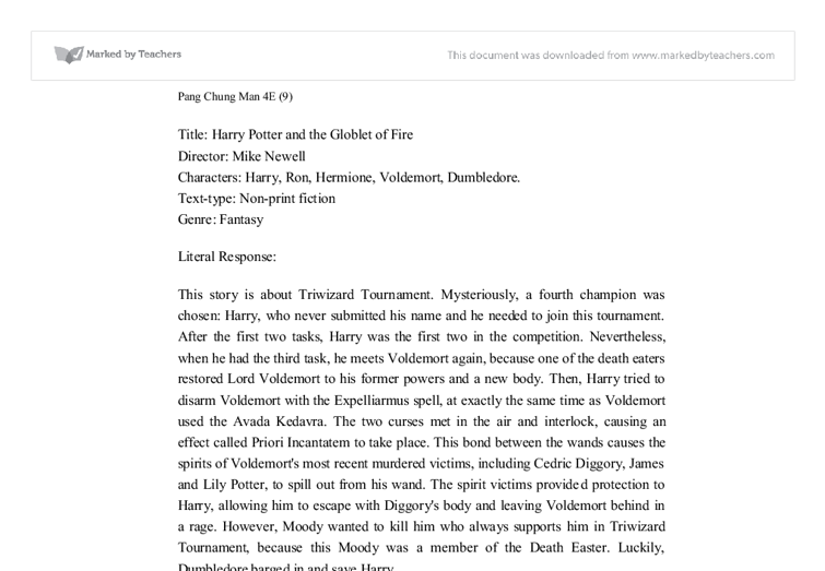 Harry potter review essay
