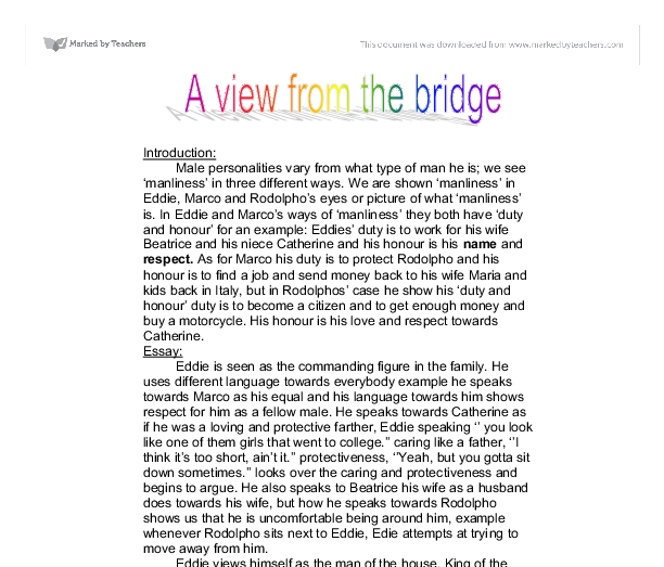 what is the significance of eddie in a view from the bridge essay
