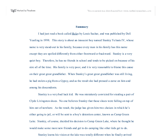essay on holes novel