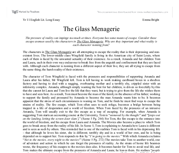glass menagerie term paper The glass menagerie is a memory play, and tom makes it clear from the beginning that we are seeing events through the lens of his memories, heightening emotions and drawing out significances as memories do.