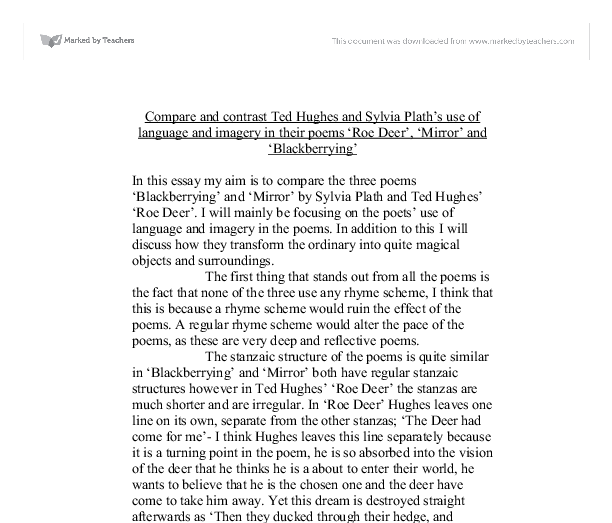 an analysis of silvia plaths essay a comparison Home study guides sylvia plath: poems daddy summary and analysis sylvia plath: poems by sylvia plath buy study guide sylvia plath: poems summary and analysis.