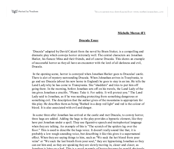 Should The Government Provide Health Care Essay Document Image Preview Process Paper Essay also Essay Term Paper Dracula Adapted By David Calcutt From The Novel By Bram Stoker  Health Issues Essay
