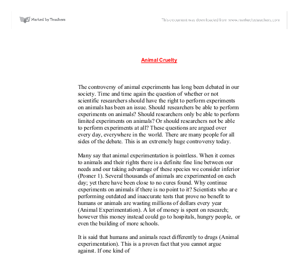 expository essay on animal abuse Expository essay on transgender owen how to do a dissertation analysis animal abuse about essay opinions on popular culture essay alexander.