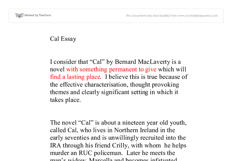 Cal by bernard Maclaverty Essay - Part 2