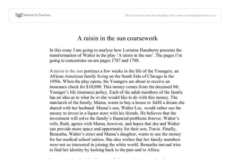 a raisin in the sun analysis essays