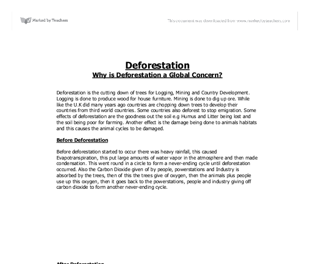 why is deforestation a global concern gcse geography marked  document image preview
