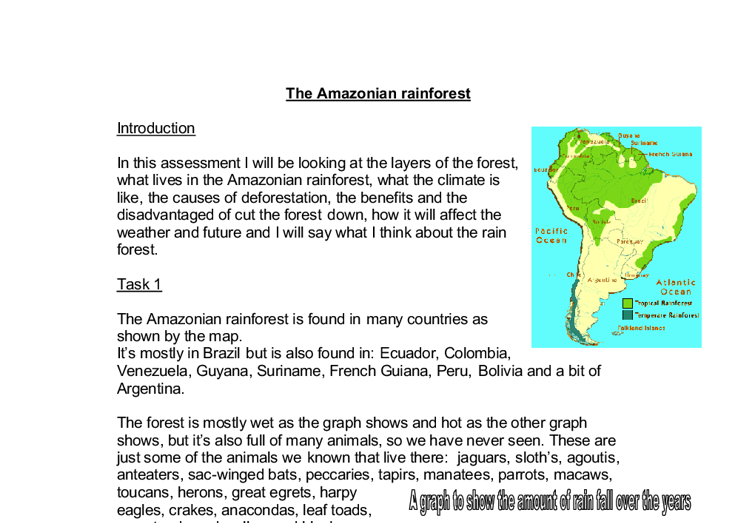 Essay about the amazon rainforest
