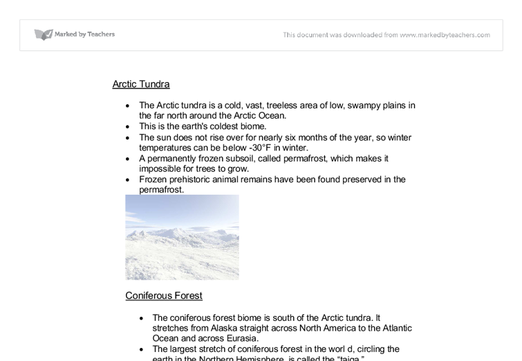 tundra biome essay I believe dry tropical forest and tundra are well represented in  however, the  particular biome offers income to humans, such as grazing.