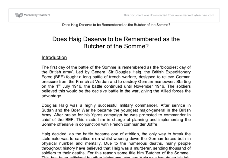 Haig – Butcher of the Somme? Essay Sample