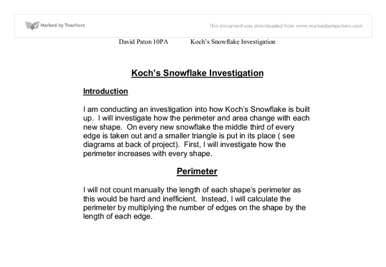 The Koch Snowflake Essay Sample