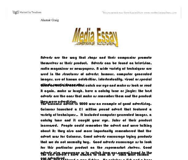 essay about the media