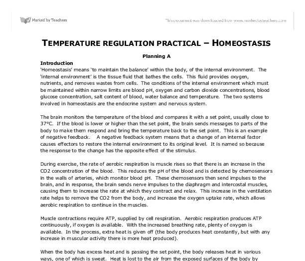 temperature regulation practical homeostasis gcse physical  document image preview