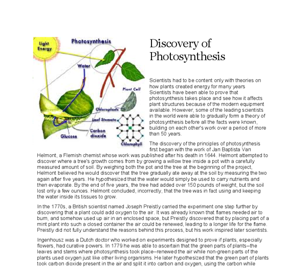 The Discovery Of Photosynthesis  Gcse Science  Marked By Teacherscom Document Image Preview