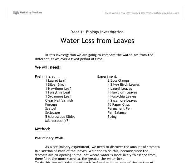 the water loss from leaves through stomata essay Essays stomata lab report in leaves, gas exchange occurs through little pores called the of its leaves prevent the large loss of water from leaf due to.
