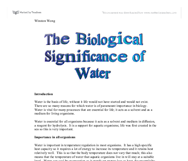 ENGLISH ESSAYS: Essay topic: The importance of water