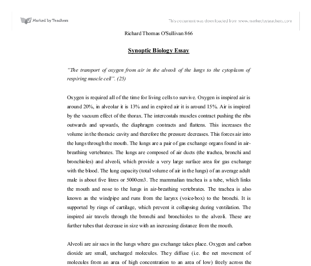 synoptic biology essay the transport of oxygen from air in the  document image preview