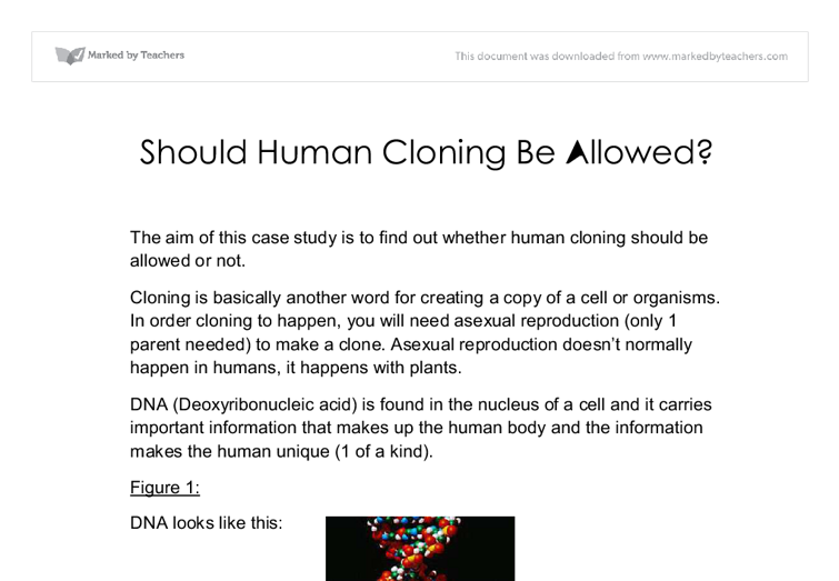should human cloning be allowed gcse science marked by  document image preview
