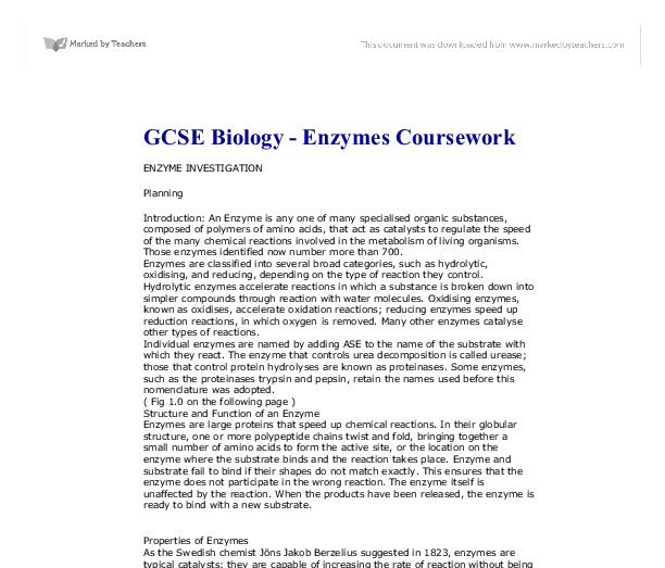 science coursework enzymes