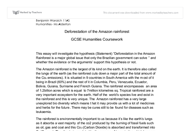 deforestation of the amazon rainfores humanities essay gcse document image preview