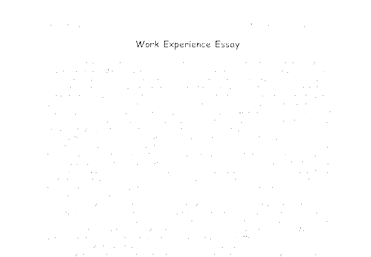 Working experience essay
