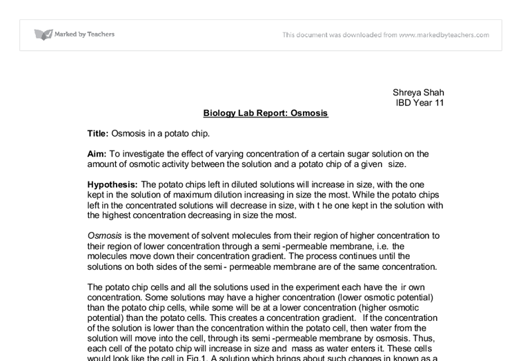 osmosis lab report essays Introduction the reason of this experiment was to identify the properties and effects of osmosis osmosis can be defined as the diffusion of water through a.