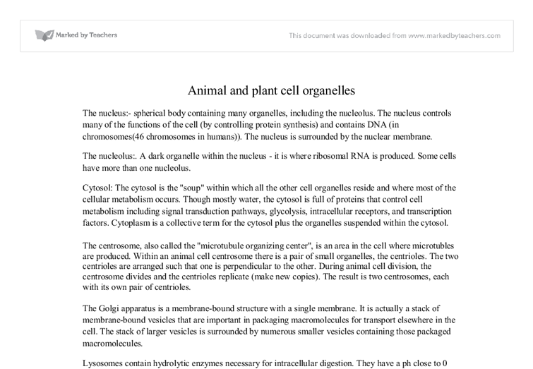 animal and plant cell organelles international baccalaureate  document image preview