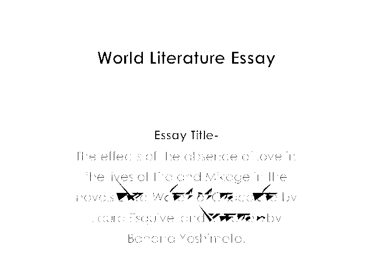 English world lit essay the effects of the absence of for Kitchen yoshimoto pdf