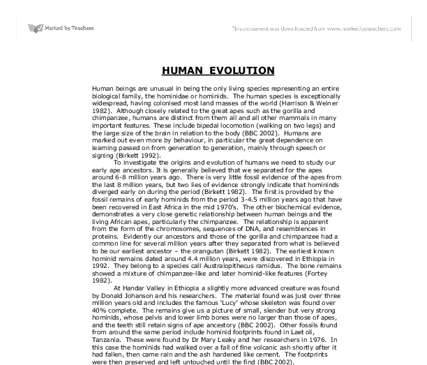 Essay on human evolution