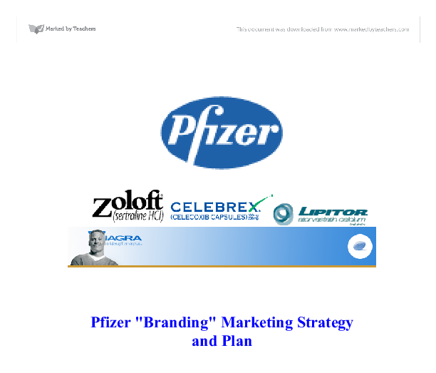 pfizer marketing plan essays