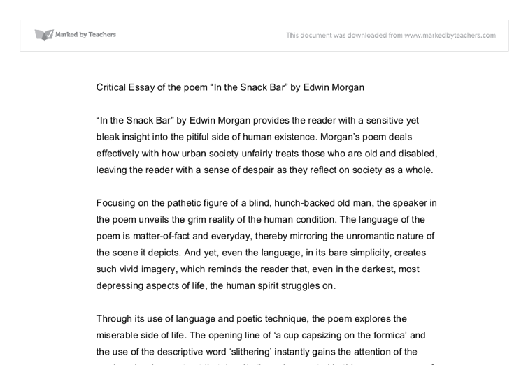 critical essay of in the snack bar university linguistics  document image preview