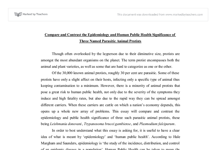 Epidemiology global and public health essay